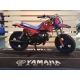 KIT DECO YAMAHA PW50 PLANET RACING