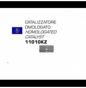 CATALYSEUR ARROW HOMOLOGUE