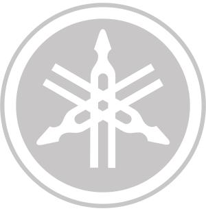 SILENCIEUX XMAX250 AKRAPOVIC TITANE